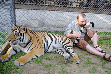 He was hungry, turns out the tiger was as well.